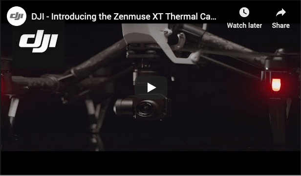 thermal imaging drone surveys